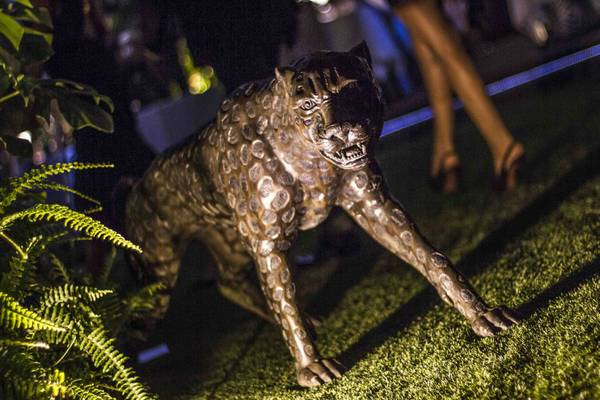 Ibiza Art Exhibition Cavalli Ibiza